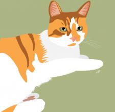 pet portraits marie oneill brisbane illustrator