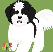 dog portrait 2-02