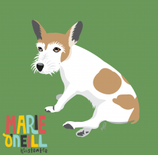 marie oneill brisbane illustrator illustrated pet portraits-02