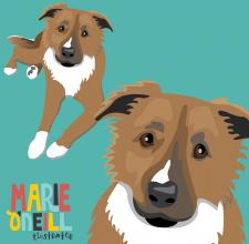 marie oneill brisbane illustrator illustrated pet portraits dog portraits-02