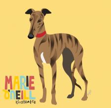 marie oneill brisbane illustrator pet portrait-03