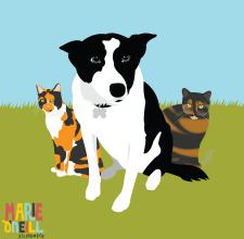 marie oneill brisbane illustrator pet portraits-01
