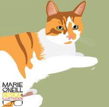 marie oneill brisbane illustrator pet portraits-03